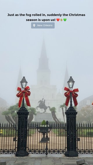 Just as the fog rolled in, suddenly the Christmas season is upon us! ❤️⚜️💚