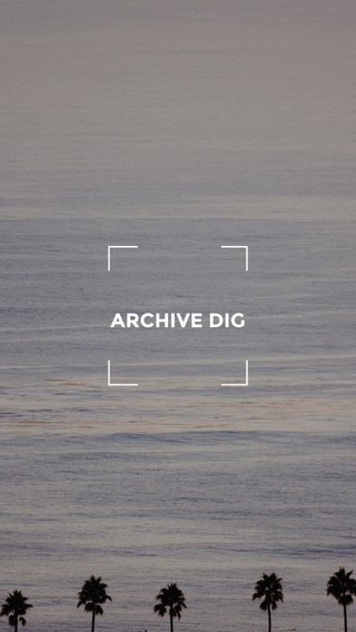 ARCHIVE DIG
