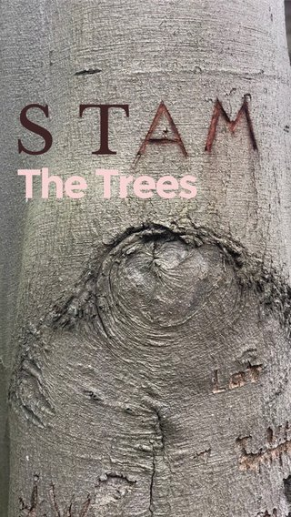 ST The Trees
