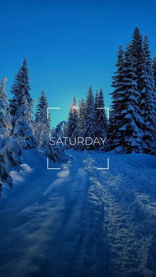 SATURDAY #pnw #hiking #nature #snow