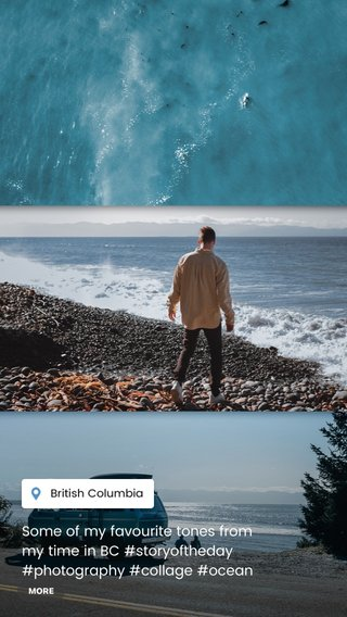 Some of my favourite tones from my time in BC #storyoftheday #photography #collage #ocean #forest