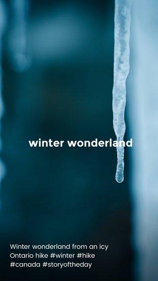 winter wonderland Winter wonderland from an icy Ontario hike #winter #hike #canada #storyoftheday