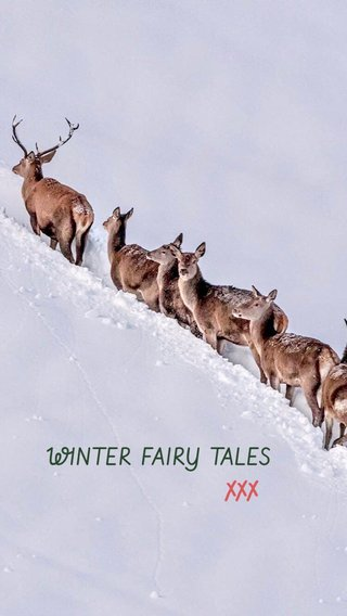 XXX WINTER FAIRY TALES