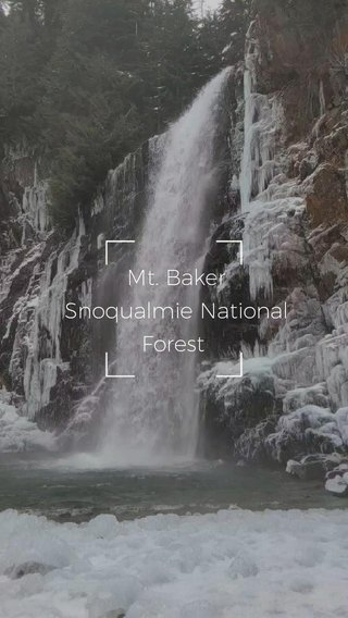 Mt. Baker Snoqualmie National Forest #pnw #hiking #nature #snow #winter #pnw #hiking #nature #snow