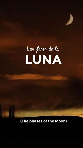 LUNA Las fases de la (The phases of the Moon)