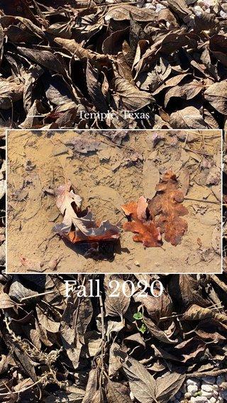 Fall 2020 Temple, Texas
