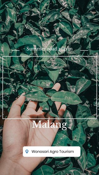 Malang Summer road trip in