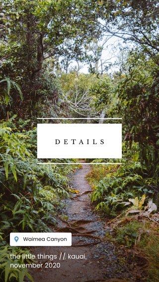 the little things // kauai, november 2020 DETAILS
