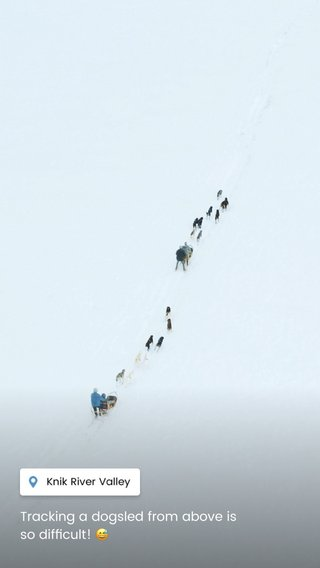 Tracking a dogsled from above is so difficult! 😅