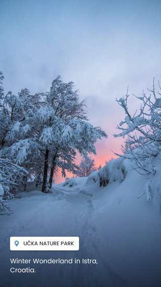 Winter Wonderland in Istra, Croatia.