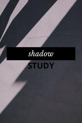 STUDY shadow