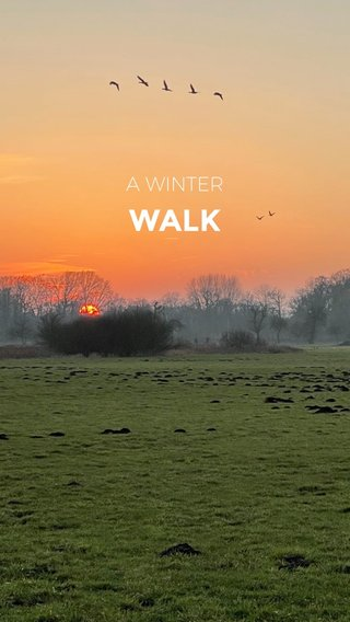 WALK A WINTER