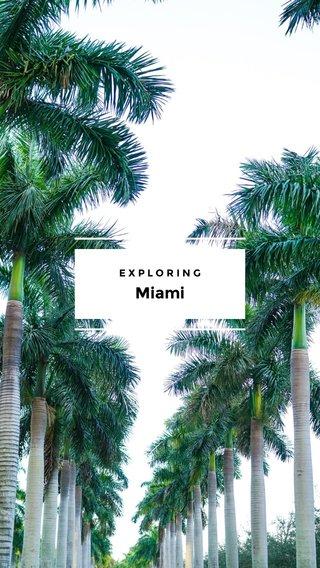 Miami EXPLORING