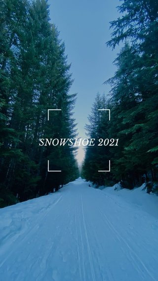 SNOWSHOE 2021