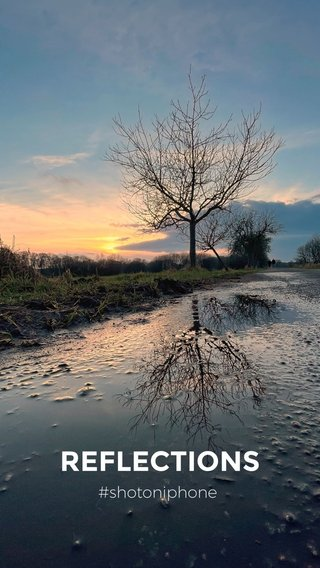 REFLECTIONS #shotoniphone