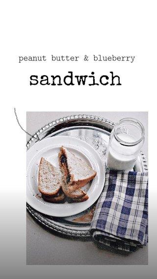 sandwich peanut butter & blueberry