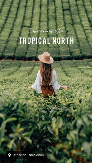 TROPICAL NORTH Exploring the