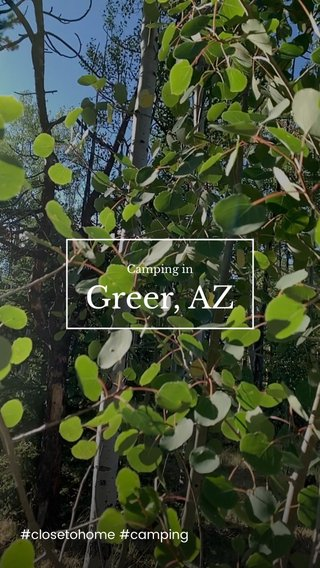 Greer, AZ #closetohome #camping Camping in