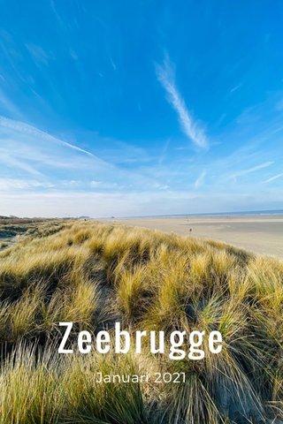 Zeebrugge Januari 2021