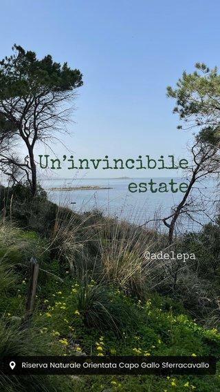 Un'invincibile estate @adelepa