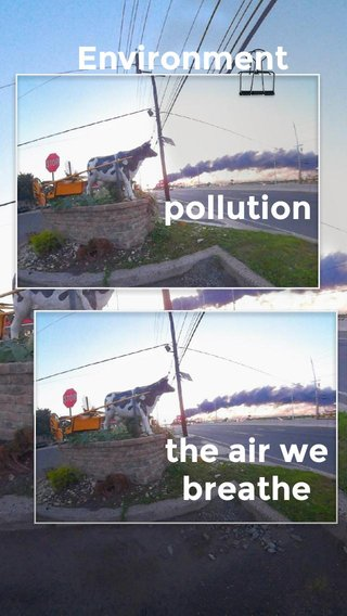 Environment pollution the air we breathe