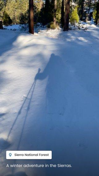 A winter adventure in the Sierras.