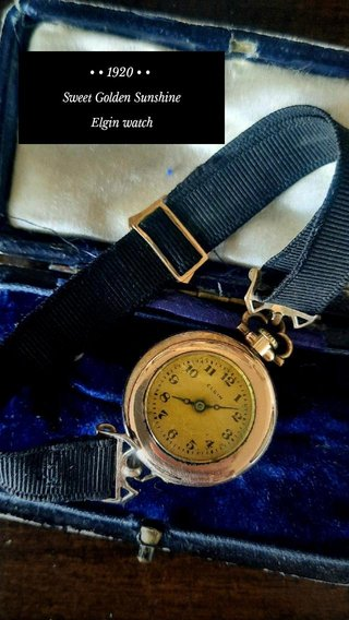 • • 1920 • • Sweet Golden Sunshine Elgin watch
