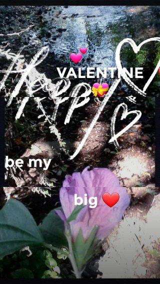 ❤ 💕 big ❤ be my VALENTINE 💝