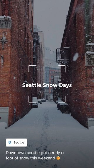 Seattle Snow Days Downtown seattle got nearly a foot of snow this weekend 😍
