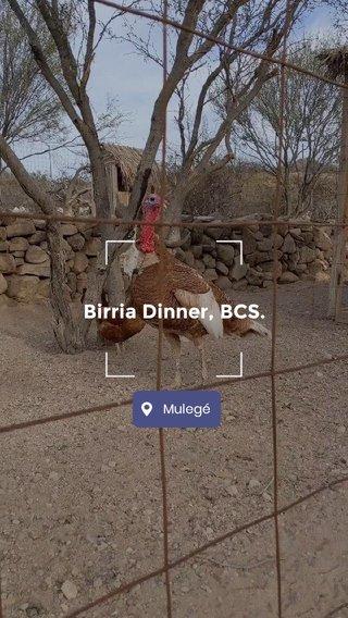 Birria Dinner, BCS.