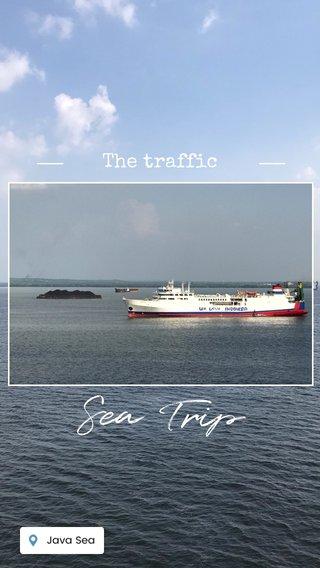 Sea Trip The traffic