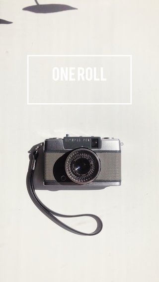 ONE ROLL