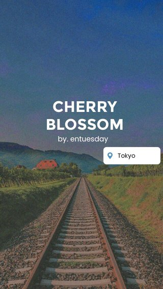 CHERRY BLOSSOM by. entuesday