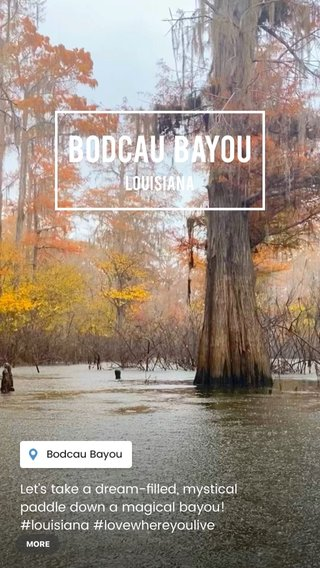 Bodcau Bayou Louisiana Let's take a dream-filled, mystical paddle down a magical bayou! #louisiana #lovewhereyoulive #louisianalove #louisianatravel #louisianafeedyoursoul #kayaking #kayakadventures