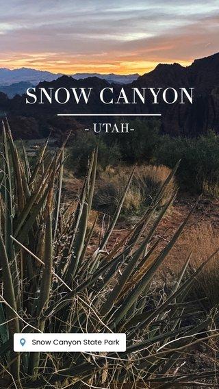 SNOW CANYON - UTAH-