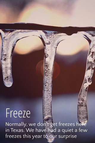 Freeze Normally, we don't get freezes here in Texas. We have had a quiet a few freezes this year to our surprise