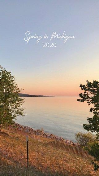 Spring in Michigan 2020