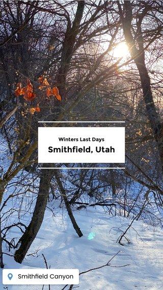 Smithfield, Utah Winters Last Days