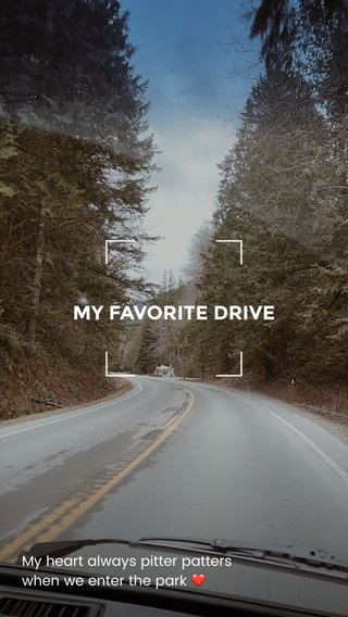 MY FAVORITE DRIVE My heart always pitter patters when we enter the park ❤️