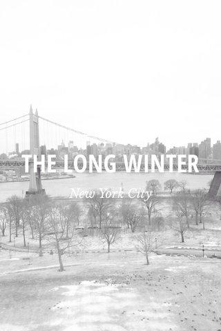 THE LONG WINTER New York City