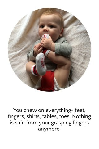 You chew on everything- feet, fingers, shirts, tables, toes. Nothing is safe from your grasping fingers anymore.