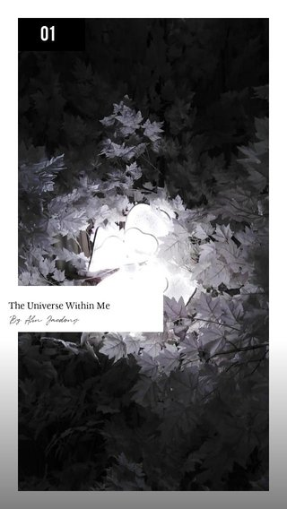 01 By Ahn Jaedong The Universe Within Me