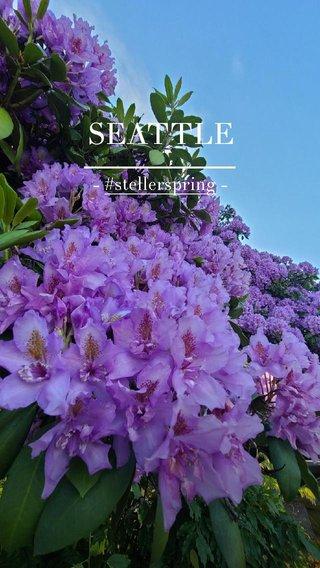 SEATTLE - #stellerspring -