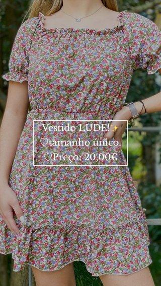 Vestido LUDE!✨ ♡︎tamanho único. ♡︎Preço: 20,00€