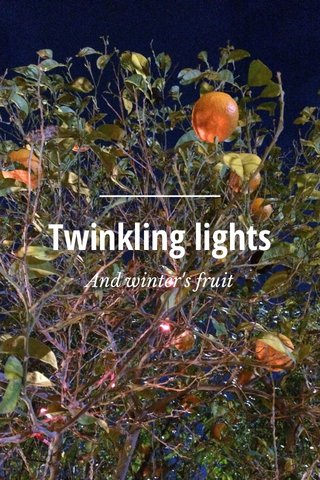 Twinkling lights And winter's fruit