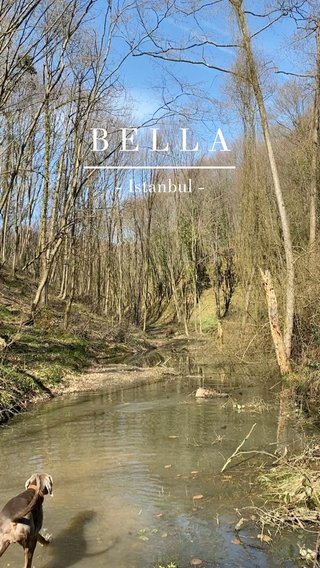 BELLA - Istanbul -