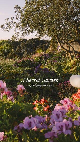 A Secret Garden #stellerspring