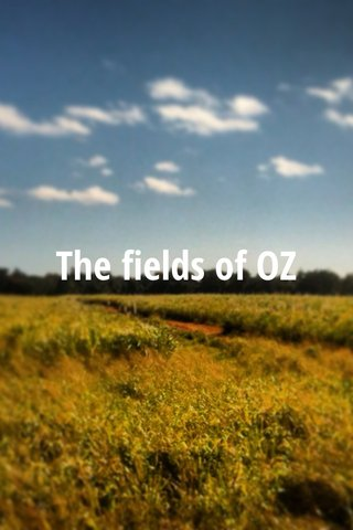 The fields of OZ