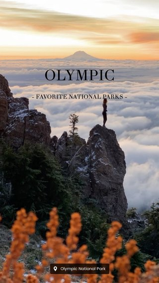 OLYMPIC - FAVORITE NATIONAL PARKS -