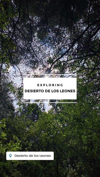 DESIERTO DE LOS LEONES EXPLORING